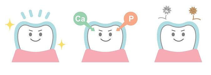 大切な乳歯